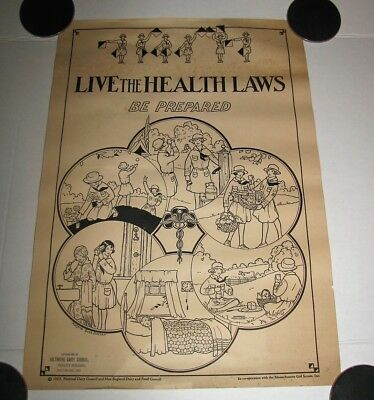 Rare 1927 National Dairy Council Milk Poster Girl Scouts Live The Health Laws