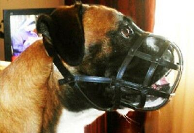 Boxer Leather Muzzle