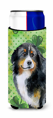 Bernese Mountain Dog St Patrick's Michelob Ultra Hugger for slim cans