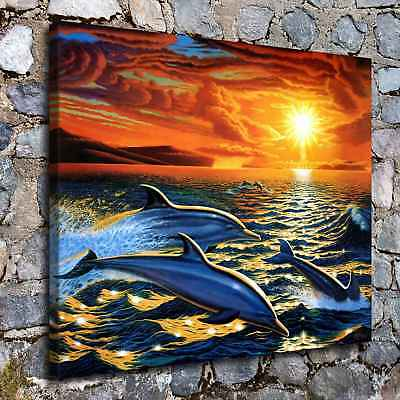"""16""""x20"""" Dolphin Dream Home Decor Room HD Canvas Print Picture Wall Art Painting"""