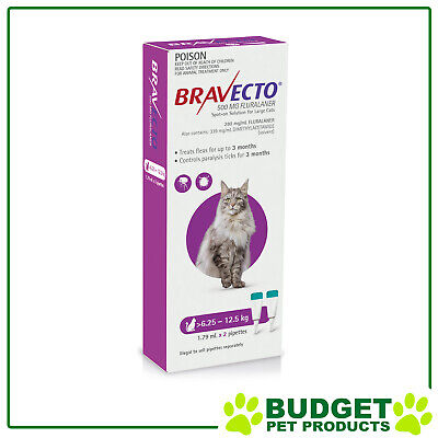 Bravecto Spot On For Cats Purple 6.25-12.5kg 2 Doses