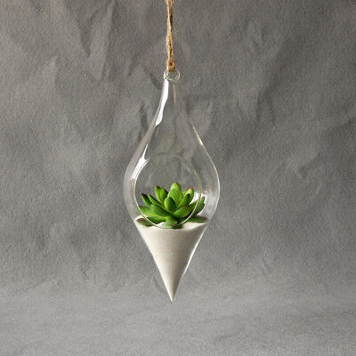 EE49 Hanging Glass Vase Hanging Terrarium Plant Flower Clear Office Home Decor
