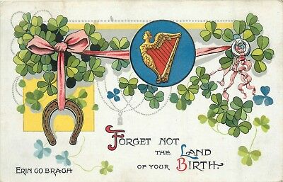 Vintage irish greeting postcard posted 1909 560 picclick uk erin go bragh forget not the land of your birth vintage irish greetings m4hsunfo
