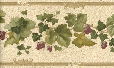 Rustic Grapes Vine Green Ivy Wallpaper Border Beige Brown Trim Country Decor