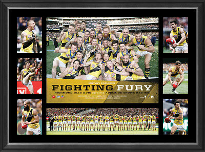 Richmond 2017 AFL Official Premiership Deluxe Tribute Print Framed Fighting Fury