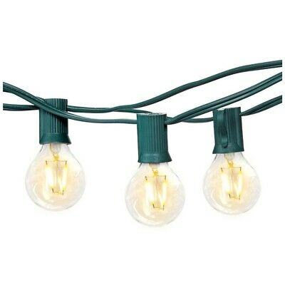 Brightech Ambience Pro - Waterproof LED Outdoor String Lights,  26 Ft, Green