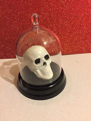 Skull In Dome Day of the Dead- Free Shipping