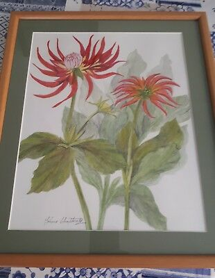 ORIGINAL SIGNED & FRAMED WATERCOLOUR PAINTING Of flowers .