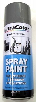 Ultracolor Silver Spray Paint 250G Can - Internal & External Applications