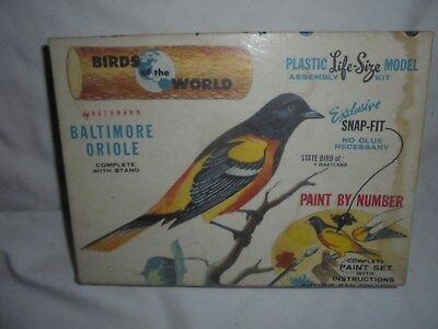 Vintage Bachman Bros Baltimore Oriole paint by number model in box