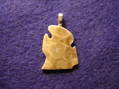 Petoskey Stone Michigan Shape Lower Penninsula  Pendant Gift Fossil Coral