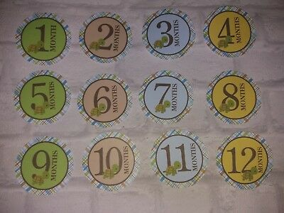 baby age milestone memorable moments  1-12 month, 12 my first cards, photo prop