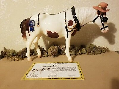 "Breyer 2012 Vintage Club SR  ""GUS"" , Glossy pinto Old Timer w/COA and hat"