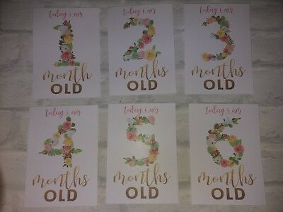 baby age milestone memorable moments cards 1-12 month, baby shower, photo prop