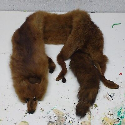 Vintage Red Fox Fur Stole Real Scarf Full Body Old
