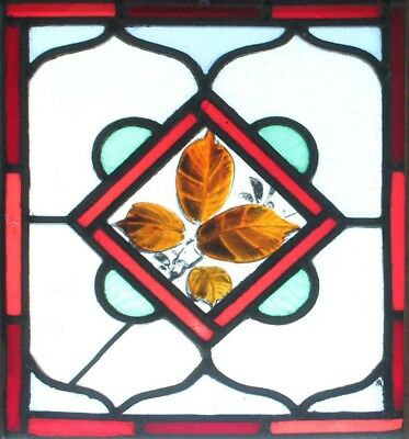 Beautiful Painted Victorian Leaves Antique Stained Glass Window