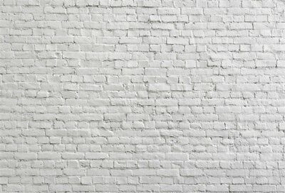 7x5Ft Old White Brick Wall Photography Backgrounds Vinyl Backdrops Props