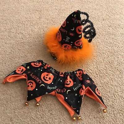 Halloween Dog Fancy Dress Up Set Pumpkin Autumn Dog Elasticated Collar & Hat New