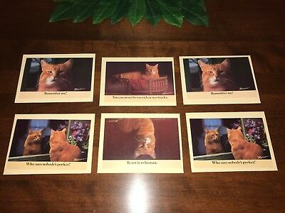 NEW Lot of 6 9-LIVES MORRIS THE CAT NOTE CARDS ENVELOPES ~ 1984 Star-Kist Foods