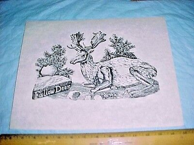 """Parson Jonathan Fisher woodcut print """"Fallow Deer """"marked """"Limited Edition"""""""