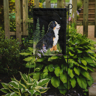 Carolines Treasures  SS8468GF Starry Night Bernese Mountain Dog Flag Garden Size