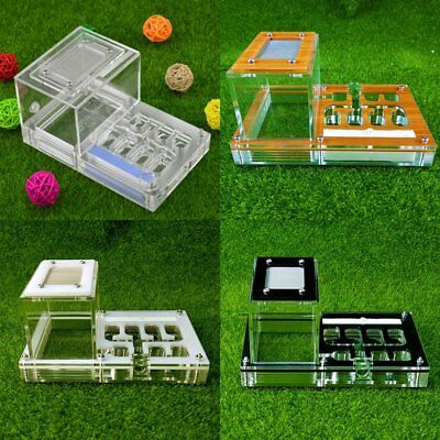 New 1pc Acrylic Ant Nest Small Housing Ant Farm Formicarium For Ant Colony