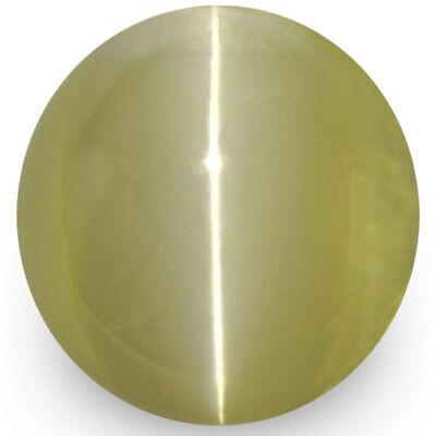 1.67-Carat Greenish Brown Chrysoberyl Cat's Eye from Ceylon (IGI-Certified)