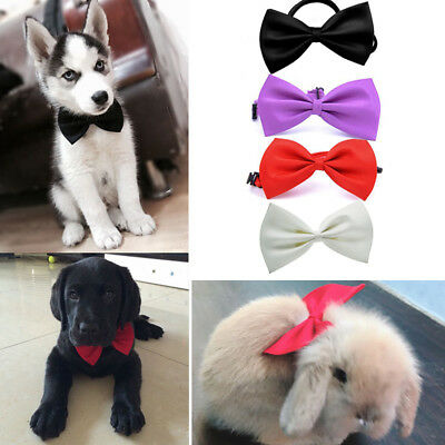 Cute Bow Tie Dog Puppy Bowknot Elegant Cat For Small Dog Necktie Clothes