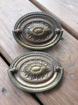 2 Antique Vintage Brass Drawer Drop Bail Pull Handle Oval Rope Flower Daisy