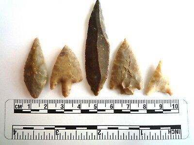 Neolithic Arrowheads x 5, High Quality Selection of Styles - 4000BC - (2440)