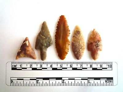 Neolithic Arrowheads x 5, High Quality Selection of Styles - 4000BC - (2448)