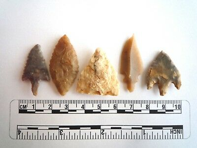 Neolithic Arrowheads x 5, High Quality Selection of Styles - 4000BC - (2423)