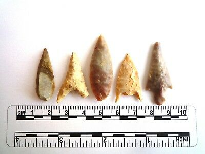 Neolithic Arrowheads x 5, High Quality Selection of Styles - 4000BC - (2438)