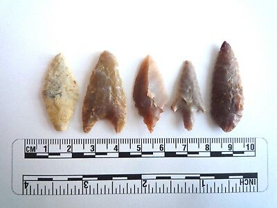 Neolithic Arrowheads x 5, High Quality Selection of Styles - 4000BC - (2400)