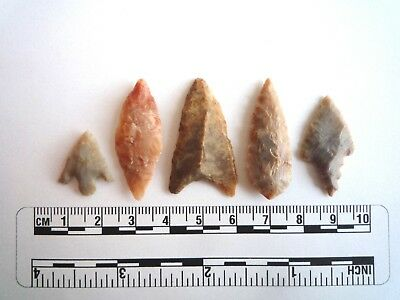 Neolithic Arrowheads x 5, High Quality Selection of Styles - 4000BC - (2417)