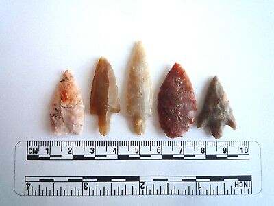 Neolithic Arrowheads x 5, High Quality Selection of Styles - 4000BC - (2409)