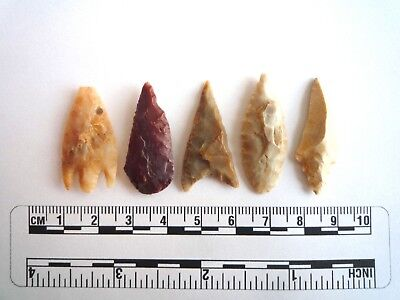 Neolithic Arrowheads x 5, High Quality Selection of Styles - 4000BC - (2418)