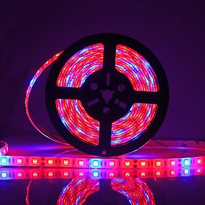 Waterproof Flexible LED Grow Strip Light 5:1 Hydroponic Plant Growing Tape Lamp