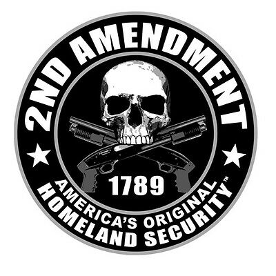 "Sticker pour casque moto ""Skull 2nd Amendment"" helmet custom trike tête de mort"