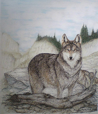 Aceo Miniature Drawing Art Trading Card Miniature Picture Wolf Wildlife Nature