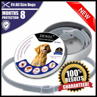 US DEWEL 33CM Seresto Collar fo dogs Tick And Flea Treatment 8 Months protection