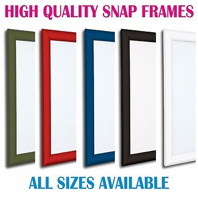 Colour Snap Frames Poster Clip Holder Display Retail Notice Board(Minor Scratch)