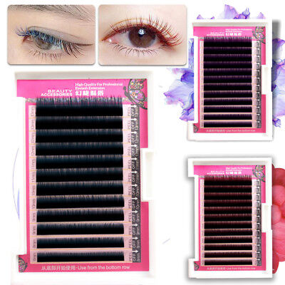 Gradient Color  Tow Tone  8-13mm in a box Individual Eyelashes Extension Eyelash