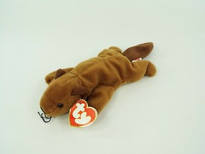 TY Beanie Babies Baby Plush Bucky the Beaver with 3rd/2nd Tags