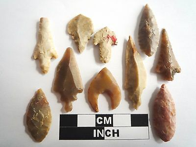 Neolithic Arrowheads x 10, High Quality Selection of Styles - 4000BC - (1071)