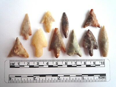 Neolithic Arrowheads x 10, High Quality Selection of Styles - 4000BC - (2463)