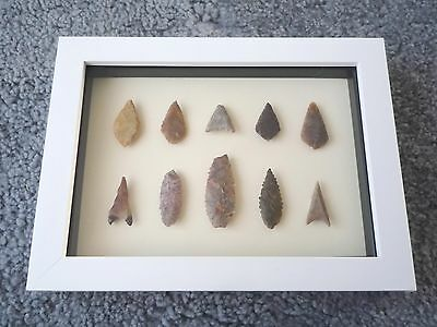 Neolithic Arrowheads in 3D Picture Frame, Authentic Artifacts 4000BC (0188)