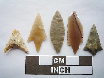 Neolithic Arrowheads x5, High Quality Selection of Styles - 4000BC - (Q118)