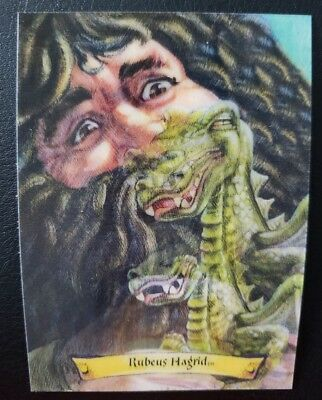 Rubeus Hagrid Lenticular 3D Wizard Collectible Card Harry Potter