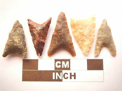 Neolithic Arrowheads, 5 x Triangle Style Artifacts - 4000BC - (Z059)